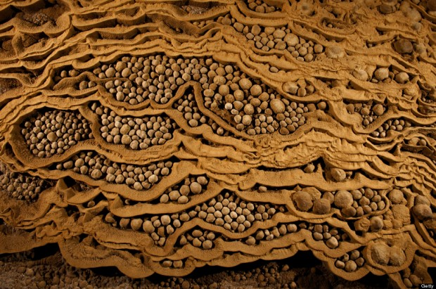 VIETNAM - MARCH 16:  Rare cave pearls fill dried-out terrace pools in Hang Son Doong.  (Photo by Carsten Peter/National Geographic/Getty Images)